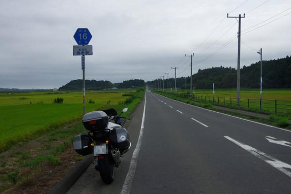 Imgp9956